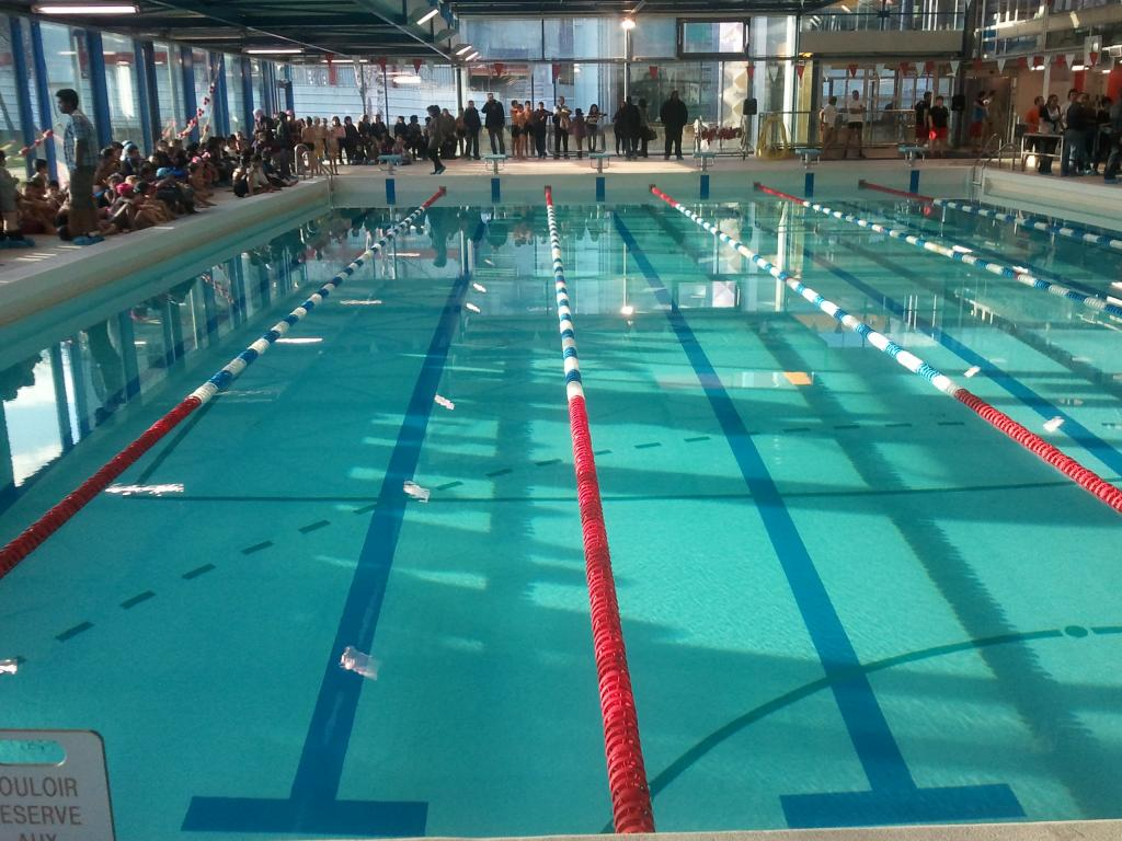 6 m daill s fran ais dans la piscine olympique d for Construction piscine olympique aubervilliers
